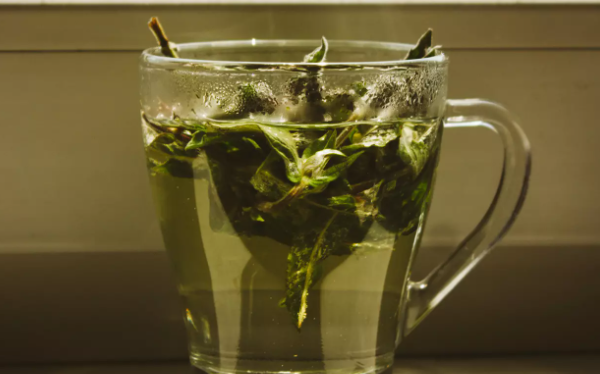"""Benefits of green tea"" that helps to ""slim"""